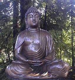 Meditation Instructions